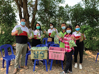 The lecturers team of College of Logistics and Supply Chain, led by Mr.Supamit Srisawat, Associate Dean of Academic Affairs, visited the academic service area at the non-toxic agricultural group, Phrong Maduea Community, Mueang, Nakhon Pathom.